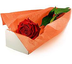 Gölbaşı çiçekçiler  çiçek siparişi sitesi  Kutuda tek gül özel kisilere